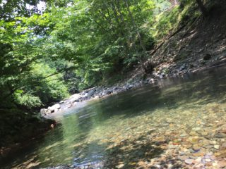 山と川とキャンプと癒し