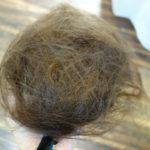 髪が多い!梳かない削がないフレンチカットグランってなに?