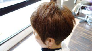 ハナ ヘナは髪が傷まない白髪染め