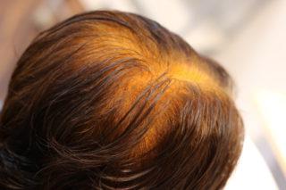 天然100%ヘナの白髪染めって不思議ですね~